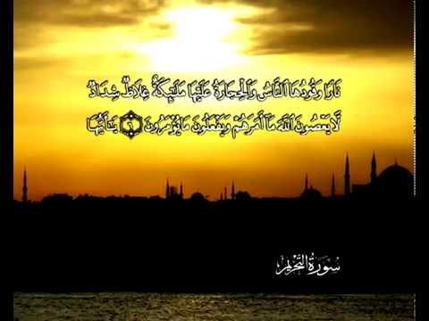 सुरा सूरतुत् तह्रीम<br>(सूरतुत् तह्रीम) - शेख़ / महमूद अल-बन्ना -