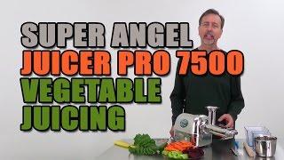 Super Angel Juicer Pro 7500 Vegetable Juicing
