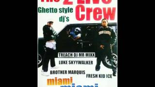 2 LIVE CREW   GHETTO BASS 2