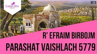 Parashat Vaishlach