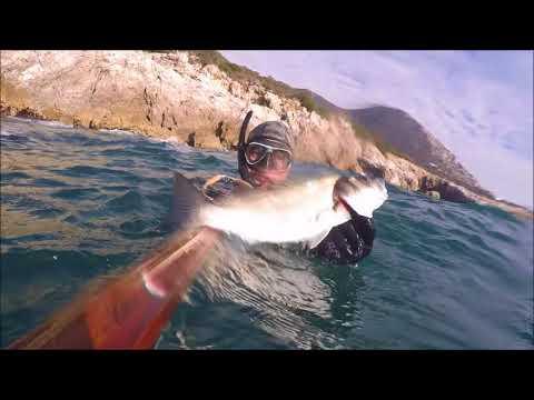 La pesca su unaviorimessa Krasnoyarsk Krai