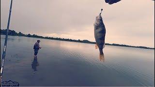 Рыбалка на новом мосту в барнауле