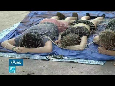 العرب اليوم - مطالبات  بوقف اعتدءات النباتين التي تهدف لتحقيق المساواة بين الإنسان والحيوان