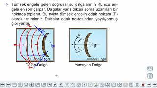 Eğitim Vadisi 10.Sınıf Fizik 12.Föy Dalgalar 1 Konu Anlatım Videoları