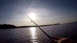 Рыбалка в брестской области на озере селец