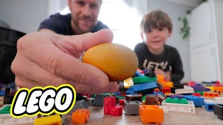 Can we hatch an egg with LEGOs? The DIY LEGO Incubator.