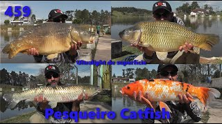 Fishingtur na TV 459 - Muitas carpas no Pesqueiro Catfish