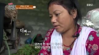 글로벌 아빠 찾아 삼만리 - 네팔에서 온 형제 1부- 젖소 아빠와 코끼리 엄마의 희망_#001