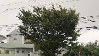 【台風24号】2018年09月30日 17時頃の福岡市の様子(管理者撮影)