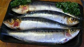 How To Fillet And Clean ,Sardines.And Cook Them.CORNISH SARDINES/PILCHARDS.