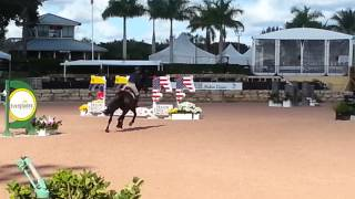 Jordan Hill and Prestige - Palm Beach Riding Academy-Brianne Goutal