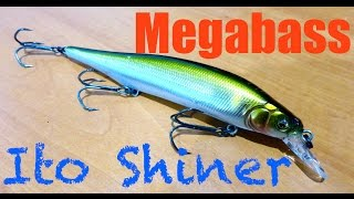 Megabass Ito Shiner Review + Underwater Footage