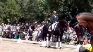 TOTILAS, der schwarze Liebling! - YouTube
