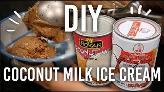 How To Make Coconut Milk Chocolate Ice-cream