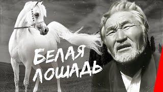 Белая лошадь (1966) фильм