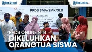 PPDB Online NTB Dikeluhkan Wali Siswa, Susah Login hingga Terpaksa Terbang dari Bima ke Mataram