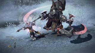 Tera Online - All Classes Trailer HD