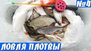 Тесто для ловли рыбы зимой