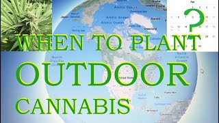 Which date to plant your cannabis outside, WHERE YOUR GROWING!