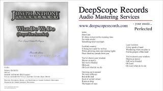 Joseph Anthony Ricciardo - What Do We Do (Music, Credits and Lyrics)