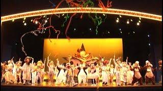 【TDL】🌟ワンマンズ・ドリームⅡ~ザ・マジック・リブズ・オン~🌟『カウントダウン2008』【ベストポジ】