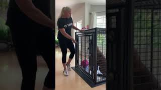 Xtreme Giant Heavy Duty Dog Crate By K9 Dog Trainer