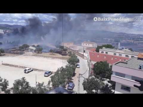 Incendi de matolls entre el Vendrell i Santa Oliva