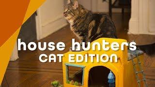 House Hunters: Cat Edition – HGTV Handmade