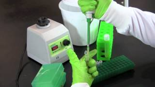 Serial Dilution and Plate Counts