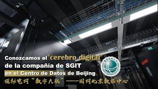 DIMENSION DEL CEREBRO DIGITAL CHINO