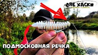 Вся резина тиога рыбалка