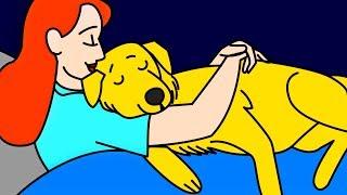 """11 Maneras en que tu perro dice """"¡Te amo!"""""""