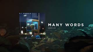 DROELOE   Many Words (Official Audio)