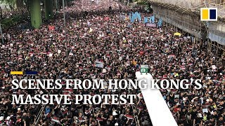 Scenes From Hong Kong's Second Straight Sunday Of Massive Anti Extradition Bill Protests