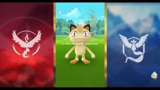 Pokemon GO #052 Meowth CATCH!