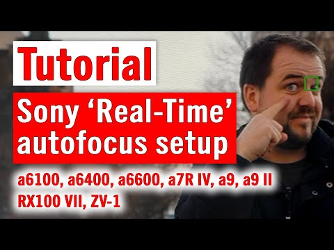 External Review Video pn0fh4XHpLY for Sony A6100 (ILCE-6100) APS-C Mirrorless Camera