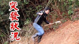 農村小伙進山餵鴨飼料,回家路上看到了什麼?一路狂追300米【石頭記事】