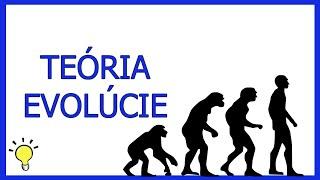 Všetko o evolúcii