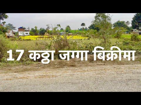 17 katha plot | 30 ft Pitch bato| Land for sale | morang ghar jagga | hamrobazar | Real Estate Nepal