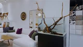 Aquarium Design Group + Design Within Reach Houston Studio
