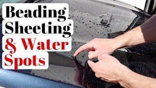 Water Beading Vs Water Sheeting | What Is It & Which Is Better?