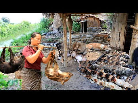 Survival: They Cooked Two Wild Boar, Crocodile With Fish
