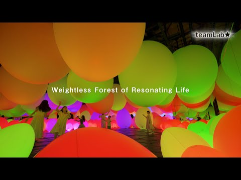 Weightless Forest of Resonating Life