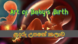 The Art Of Infant Birth /Order Of Baby Birth In The World