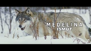 ISMUT   Medelina [ Official Video ]