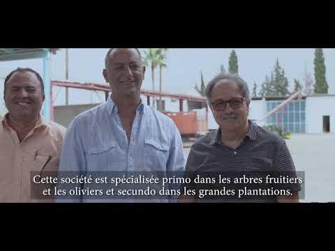 Tunisie - Agriculture