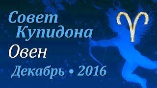 Овен, совет Купидона на декабрь 2016. Любовный гороскоп.