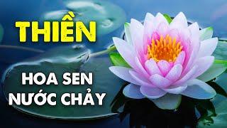 Nhạc Thiền Tịnh Tâm An Nhiên Tự Tại - Hoa Sen Nước Chảy