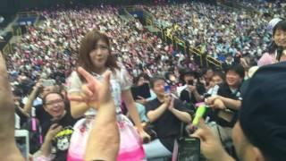 AKB48感謝祭島田晴香ファン席から・・②みゃお島田・・島田・・やだー
