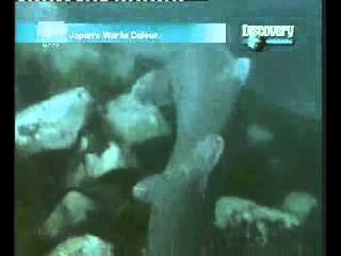 ปรสิต trematodes ของปลา